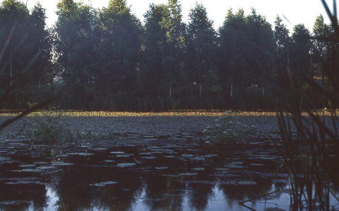 suveõhtu jõe kaldal