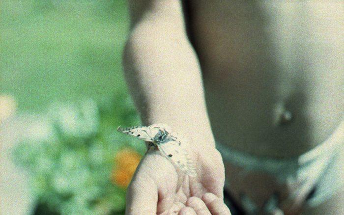 poiss liblikaga